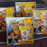 dierendag-2016-met-ndjoy-hulp-aan-honden-baasjes-cuijk3