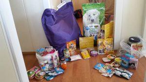 dierendag-2016-met-ndjoy-hulp-aan-honden-baasjes-cuijk6