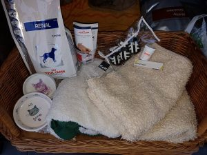 ndjoy-bestaat-1-jaar-donatie-speciaalvoer-spullen-medicatie-ndjoy-brabant-hulp-honden-baasjes