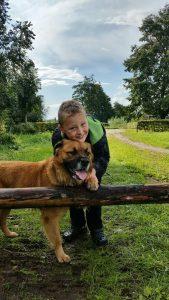 boef2-ndjoy-herplaatsing-honden-brabant