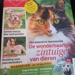 hondenwandeling-verslag-ndjoy-hulp-honden-baasjes-magazine-hart-voor-dieren