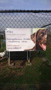 ndjoy-affiche-evenementen-spandoek-evenementenkalender-braderie-markt-hondenwandeling