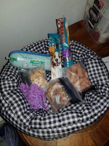 routedag-ndjoy-dankbaar-emotioneel-hulp-honden-baasjes10