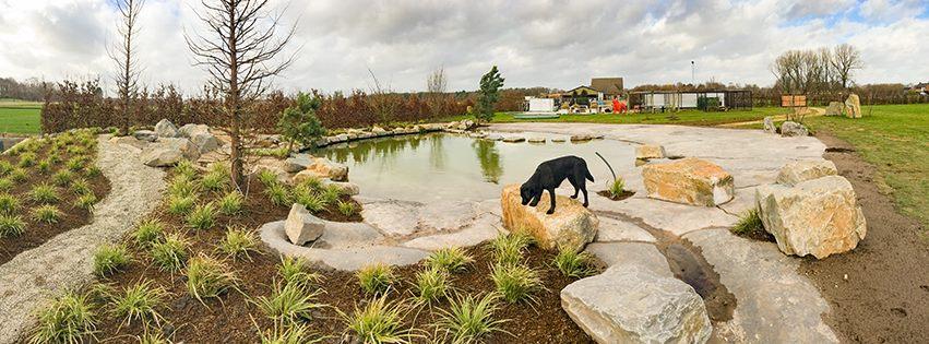 hondenwandeling-zwemfestijn-poeleke-oeffelt-ndjoy-hulp-honden-baasjes-aanmeldformulier