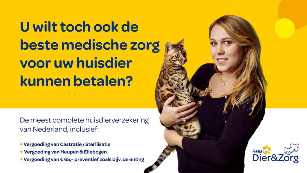 proteq-dier-en-zorg-huisdierverzekering-ndjoy-hulp-honden