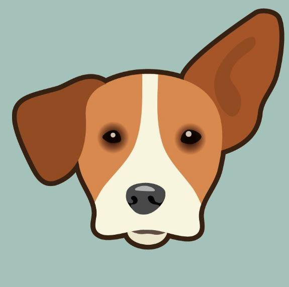 ndjoy-nieuwe-logo4-hulp-honden-baasjes-cuijk-boxmeer-vol-trots-presenteren-wij-de-nieuwe-huisstijl